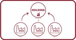 Plusieurs sociétés peuvent se regrouper et former une holding